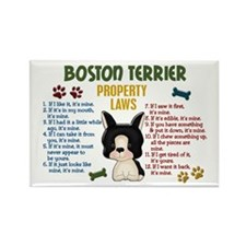 Boston Terrier Property Laws 4 Rectangle Magnet (1