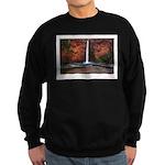 Mooney Falls Sweatshirt (dark)