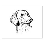 Dachsund Small Poster