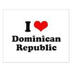 I love Dominican Republic Small Poster