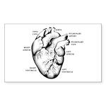 Heart Full Rectangle Sticker 10 pk)