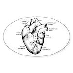 Heart Full Oval Sticker (50 pk)
