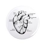 "Heart Full 3.5"" Button (100 pack)"