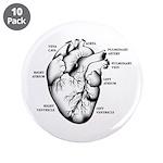 "Heart Full 3.5"" Button (10 pack)"