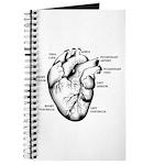 Heart Full Journal