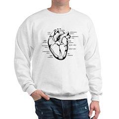 Heart Section Sweatshirt