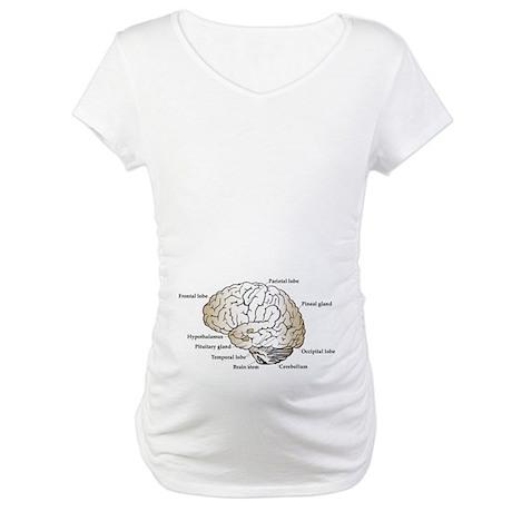 Brain Section Maternity T-Shirt