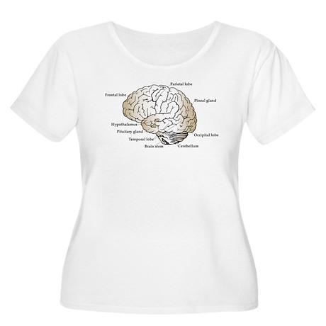Brain Section Women's Plus Size Scoop Neck T-Shirt