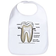Tooth Section Bib