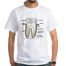Tooth Section Shirt