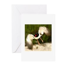 Unique Black and white photo Greeting Cards (Pk of 10)