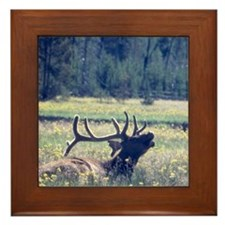 Framed Tiles featureing Bull Elk image.