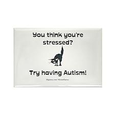 Autism Stress (cat) Rectangle Magnet