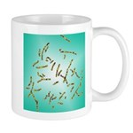 Chromosome Genetic Mug