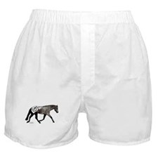 Blanketed Appy Boxer Shorts