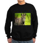 Racing Stripes Sweatshirt (dark)