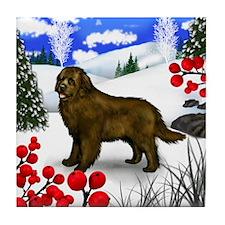 Brown Newfoundland Dog Winter Berries Tile Coaster