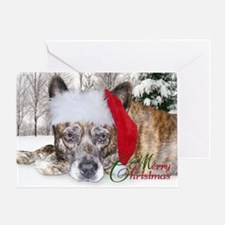 Christmas Brindle Mountain Cur Greeting Card