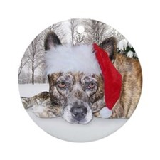 Christmas Brindle Mountain Cur Ornament (Round)
