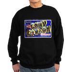 Camp Carson Colorado Sweatshirt (dark)
