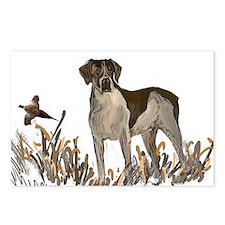 german shorthair and pheasant Postcards (Package o