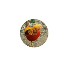 Chinese Golden Pheasant Mini Button (10 pack)