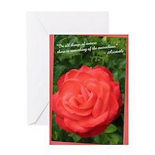 Aristotle Rose Greeting Card