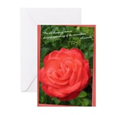 Aristotle Rose Greeting Cards (Pk of 20)