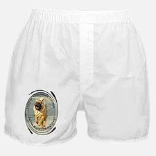 Cute Chinese shar pei Boxer Shorts