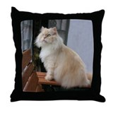 Kitten photos on pillows Throw Pillows