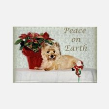 """""""Peace on Earth"""" Cairn Terrier Rectangle Magnet"""