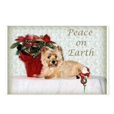 """""""Peace on Earth"""" Cairn Terrier Postcards (8 of 'em"""