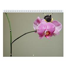 2009 Pug Wall Calendar