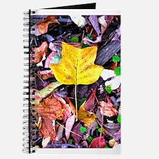 Cool Yellow tulips Journal
