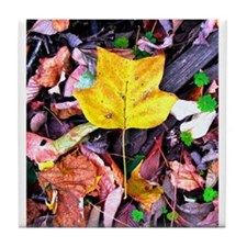 Cute Fall trees Tile Coaster