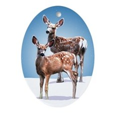 King's Fawns (blue) Oval Ornament