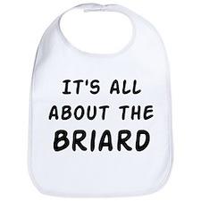 about the Briard Bib