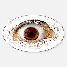 Big Ass Cyclops Eye Oval Decal