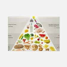 Cute Health food Rectangle Magnet (100 pack)