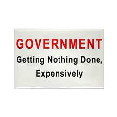 Expensive Government Rectangle Magnet (100 pack)