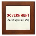Stupid Government Framed Tile
