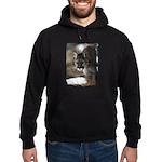 Mountain Lion Hoodie (dark)