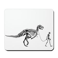 Dinosaur Walk Mousepad