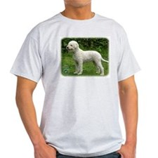 Lagotto Romagnollo 9M047D-14 T-Shirt