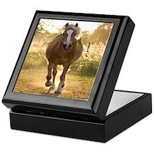 Haflinger Keepsake Box