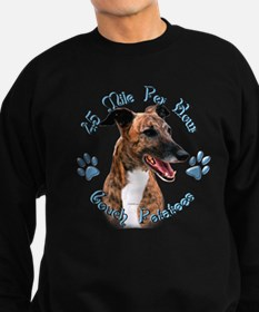 Brindle Couch Jumper Sweater