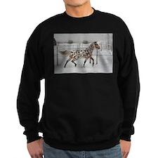 Knabstrupper 4 Sweatshirt