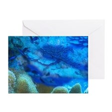 Oceanscape Greeting Cards (Pk of 10)