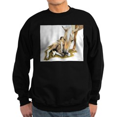 Palomino, Mare, buckskin, foa Sweatshirt