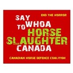 CHDC Say Whoa Slaughter Small Poster